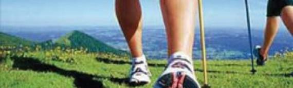 Arriva il Nordic Walking in Val di Zoldo!
